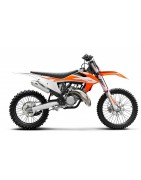 TERMIGNONI EXHAUST SYSTEMS FOR KTM 125 2T 2017-18.